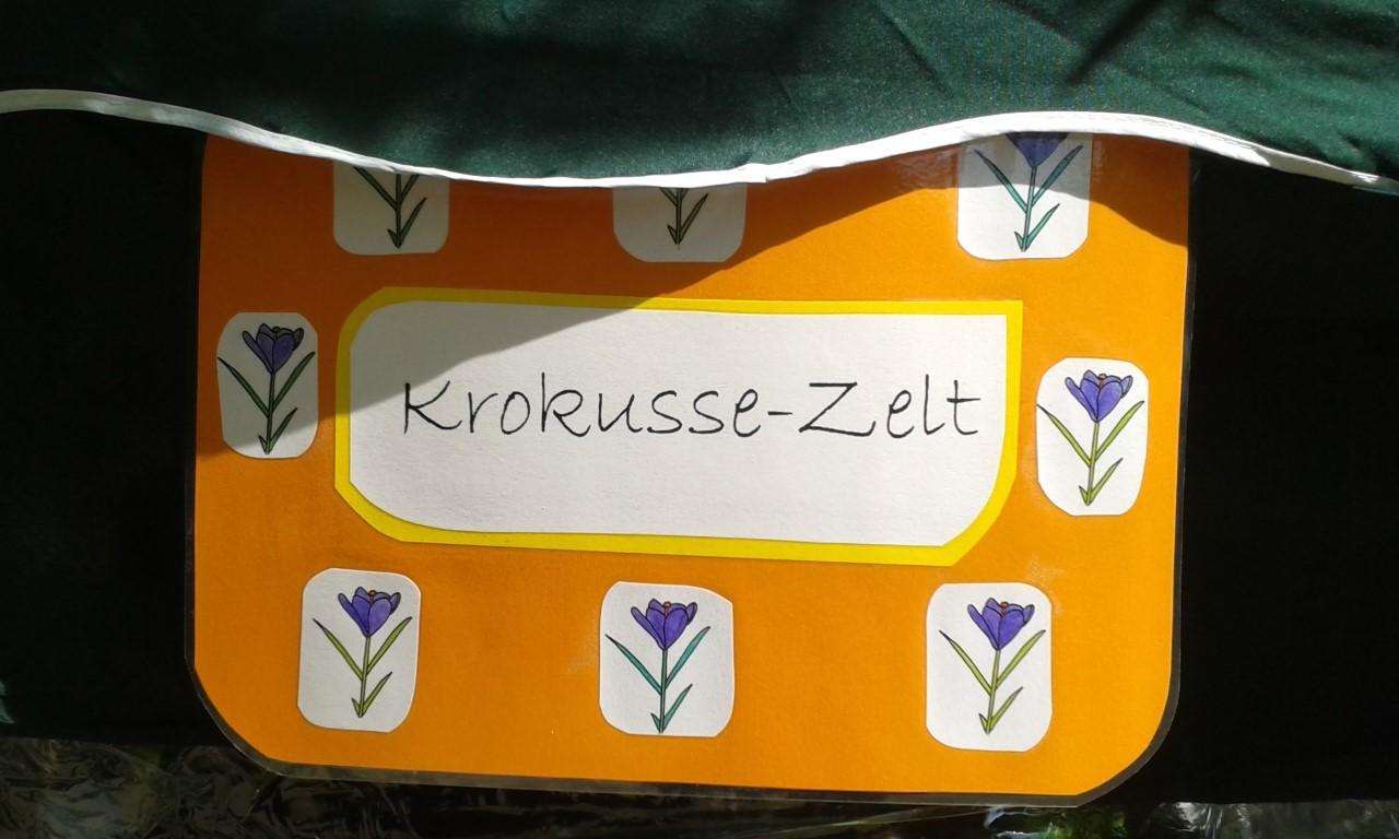 rucksack-bewegung-2018_Krokussezelt_z