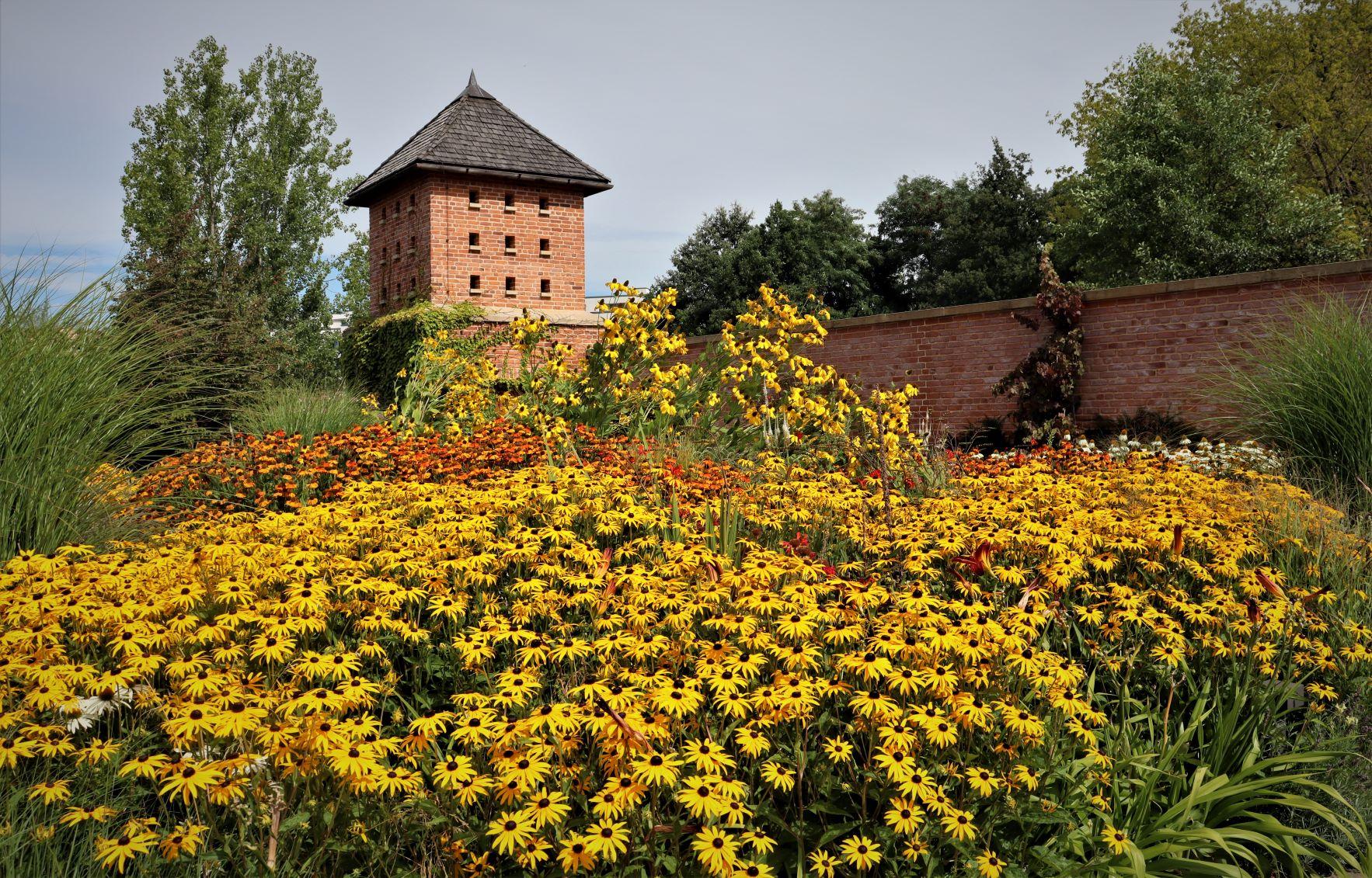 Wetter Mahlsdorf